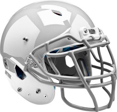 Schutt Adult 2014 Vengeance DCT Football Helmet