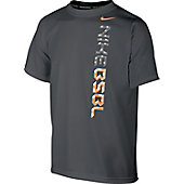 Nike Youth Baseball TD Shirt