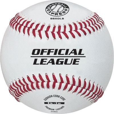 Baseball Express Official League Baseball Dozen