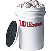 WILSON PRACTICE BLEM BALLS & BUCKET ADULT #A1010S