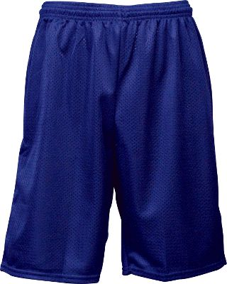 Team Express Royal Mesh Shorts Softball Shorts