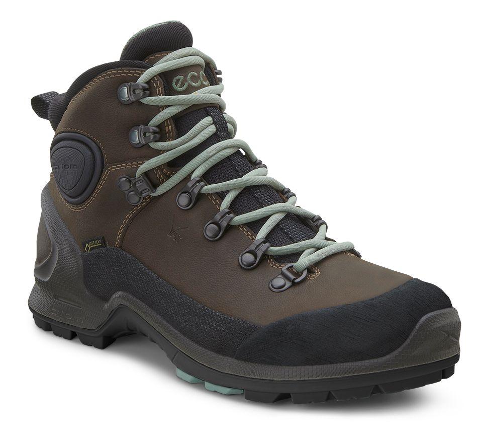 Ecco Biom Terrain High GTX Hiking Shoe