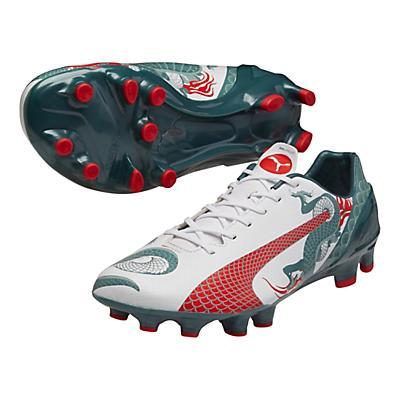 Mens Puma EvoSpeed 2.3 Graphic FG Cleated Shoe