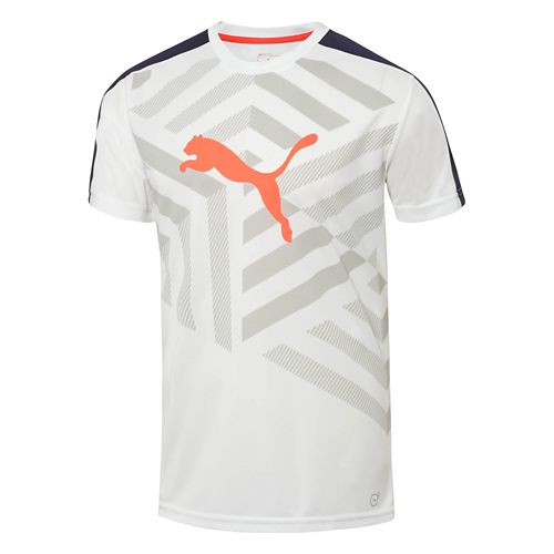 Mens Puma IT Evo TRG Graphic Tee Short Sleeve Technical Tops - White/Peacoat S