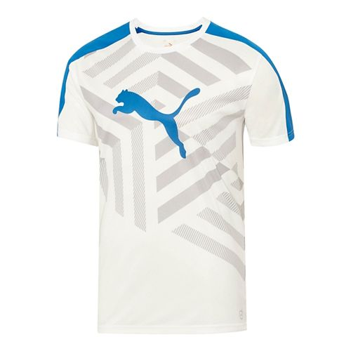 Mens Puma IT Evo TRG Graphic Tee Short Sleeve Technical Tops - White/Grey Dawn M ...