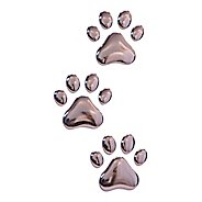 Glyphix Icons Paws 3D Chrome Emblem Fitness Equipment