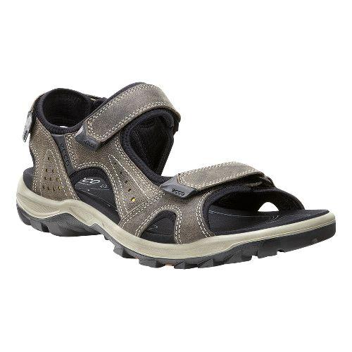 Mens Ecco Cheja Sandals Shoe - Warm grey/Olive Oil 42