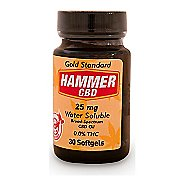 Hammer Nutrition Hammer CBD Hemp Extract 25mg 30 count softgels Supplement