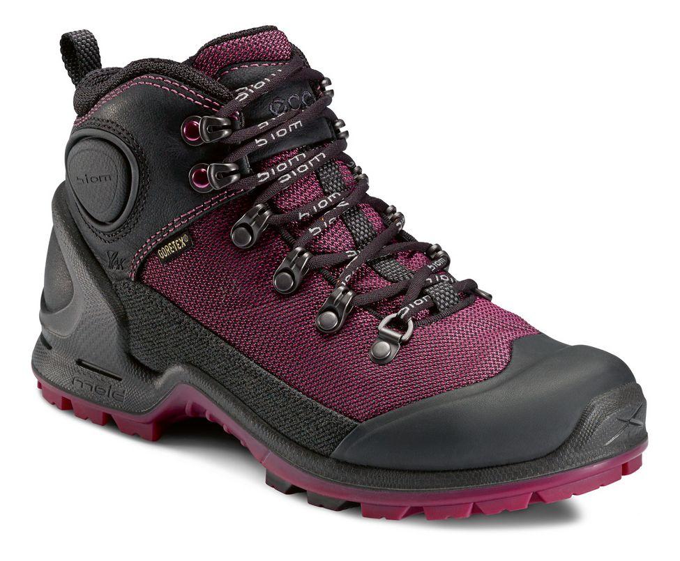 Ecco USA Biom Terrain-AKKA Mid Lite GTX Hiking Shoe