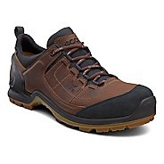 Mens Ecco USA Biom Terrain Lo GTX Hiking Shoe
