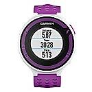 Garmin Forerunner 220 GPS Monitors