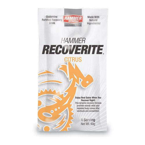 Hammer Nutrition Recoverite 6 servings Nutrition - null