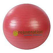 Rejuvenation Complete Support & Stability Balls Fitness Equipment