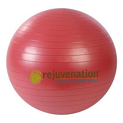 Rejuvenation Complete Support & Stability Balls Fitness Equipment