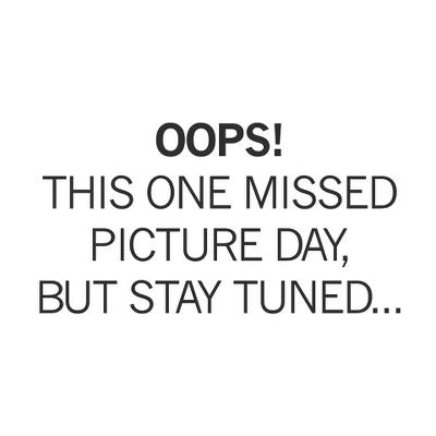 Womens R-Gear Wayward Warmth Mock Long Sleeve No Zip Technical Tops