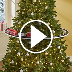 Christmas Tree Train.The Elevated Christmas Tree Train