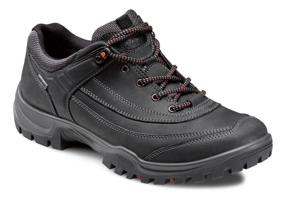 ba992a7b65a9 Mens Ecco USA Xpedition III-Torre GTX Hiking Shoe at Road Runner Sports